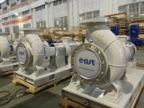 Pompe centrifuge chimique horizontale électrique avec certificats CE