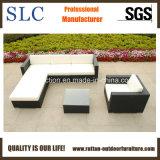 Mobilia del rattan/mobilia del rattan/sofà esterni del rattan (SC-B8850)