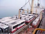 De concurrerende Oceaan Verschepende Dienst aan Egypte door Cosco/Cscl/Hmm