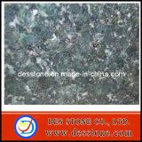 Losa popular de la mariposa de Verde del azulejo de Floorting del granito (DES-GT031)