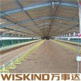 Gruppo di lavoro poco costoso e magazzino della struttura d'acciaio dell'indicatore luminoso del tetto con lo SGS
