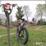 2017 [نو مودل] [متب] إطار العجلة سمين درّاجة كهربائيّة مع [500و] محرك [إبيك] لأنّ عمليّة بيع