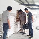 fraiseuses de la farine de blé 300t/24h automatique avec le contrôle d'AP