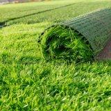جيّدة سعر كرة قدم عشب اصطناعيّة يبلّط نوعية ممتازة