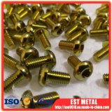 ISO7380 M5X10mm Titan verriegelt Schrauben-Torx Fahrrad-eifrigen Platten-Läufer