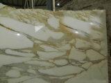 Telha natural chinesa do mármore do ouro de Calcatta preço quente da venda do bom para Backsplash