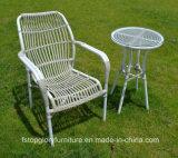 2018 새로운 디자인 옥외 여가 탁자 의자 고정되는 옥외 가구 (TG-S175)
