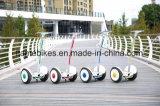 15inch Ninebot Bewegungsroller mit 1000W