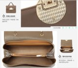 Senhora de couro Bolsa da forma das bolsas do plutônio da forma do desenhador da fábrica de Guangzhou