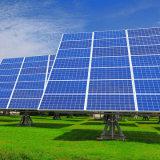 панель солнечных батарей модуля высокой эффективности 265W двойная стеклянная поликристаллическая