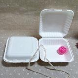 生物分解性の行く使い捨て可能なテーブルウェアバガスによって蝶番を付けられるBentoのお弁当箱食糧ボックス