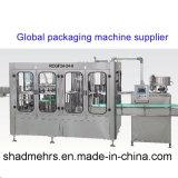 De Machine van het Flessenvullen van het glas (DCGF24-24-8B)