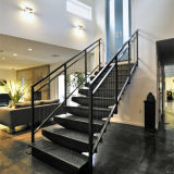 Le scale utilizzate esterne del metallo scelgono la scala diritta dell'acciaio inossidabile della traversa