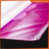 Recinzione della bandiera esterna di opzioni del PVC Gestalten della maglia