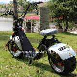 2018 кокосов города мотоцикла нового колеса конструкции 2 надувательства Prodcuts горячего нового электрических