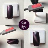 Nail Art Cat Eye Gel de couleur Nail Kit Pierre magnétique