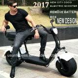 安い価格と電池の電気スクーター都市ココヤシのエアロバイクを除去しなさい
