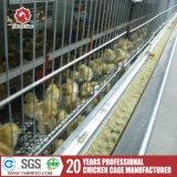 H-Tipo automático gaiola da camada da galinha para a grelha