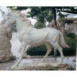Heiße weiße Marmorbuddha-Statue für Verkauf