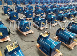 Gerador elétrico trifásico do alternador da C.A. do Stc