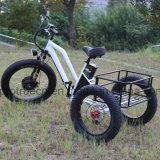 48V de Elektrische Driewieler van de Batterij van het lithium met Kleine Lading