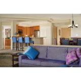 عالة مقتصدة - يجعل شقة أثاث لازم أجنحة غرفة نوم مجموعة ([ست007])