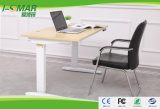 Мебель Dual-Motors Offcie электрический регулируемая стойка