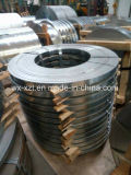 Tira inoxidable de la bobina 201/202/301/304/316/409/410/430 de la raja del acero inoxidable