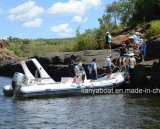 Liya 12passengers rigid Inflatable Dinghy Boats Manufacturers
