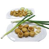 Alimento inscatolato dei migliori di qualità della Cina funghi prataioli di origine