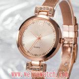 우연한 형식 상표 가죽끈 석영 숙녀 손목 시계 (Wy-17021)