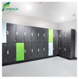 Resistente al agua Fumeihua personalizar el armario de la Piscina