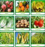 Sulfato Soa do amónio do fertilizante do nitrogênio