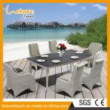 Casa de lazer moderno hotel de cordas de poliéster mesa de jantar e cadeira Definir restaurante/café escura