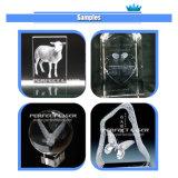 Prijs van de Machine van de Gravure van de Laser van het kristal 3D