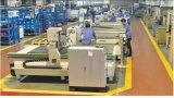 3 macchina del router di CNC dell'incisione della Tabella di vuoto di asse 6kw Hsd