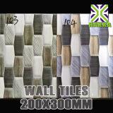 De mooie Tegels 20X30 van de Muur van het Landschap