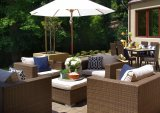 Conjunto al aire libre del sofá de los muebles de la rota de los nuevos muebles del patio