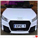 Paseo eléctrico de los cabritos en los coches Audi en China