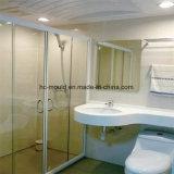 Molde de SMC para loiça sanitária/ Banho com piso parede// banheira/ Basin/ Taça de Lavagem
