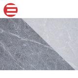 柔らかい光沢のある陶磁器の壁および床タイルのインクジェット印刷ニースデザイン