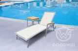 옥외 수영장 가구 테이블로 놓이는 플라스틱 직물 앙티크 2륜 경마차 로비