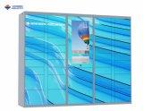 Elektronische Kast voor de Staaf van de Gymnastiek van Waterpark van de Luchthaven