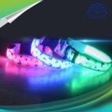 패턴 색깔 LED 개 목걸이를 인쇄하는 심혼 모양