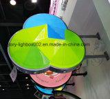 Exhibición de acrílico personalizados Display Círculo Caja de luz