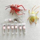 Qualitäts-multi Größen-silberner Edelstahl-EntomologiePin für Labor