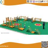 体操の庭の屋外の木の適性装置橋