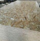 Orientado Strandboard OSB se utilizará para la Decoración Muebles