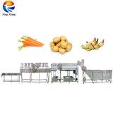 Sweet Potato Ginger lavage industriel Peeling Ligne de traitement de séchage