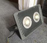 120W à LED Projecteur de jardin (TJ-FL-005-120W)